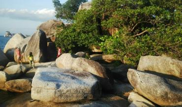 The Mashur Belitung